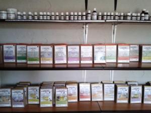 Shelves in room