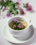 Flowers Floating in Herbal Tea