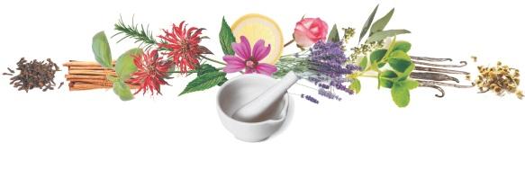 Essential Herbs logo-high resolution version 2