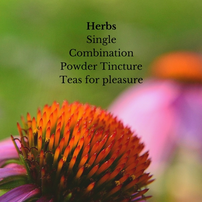 Herbs-front page