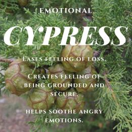 cypress-emotional