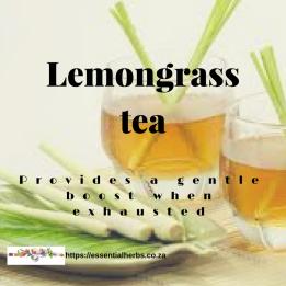 lemongrass-physical