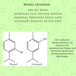mental-stretches-poster